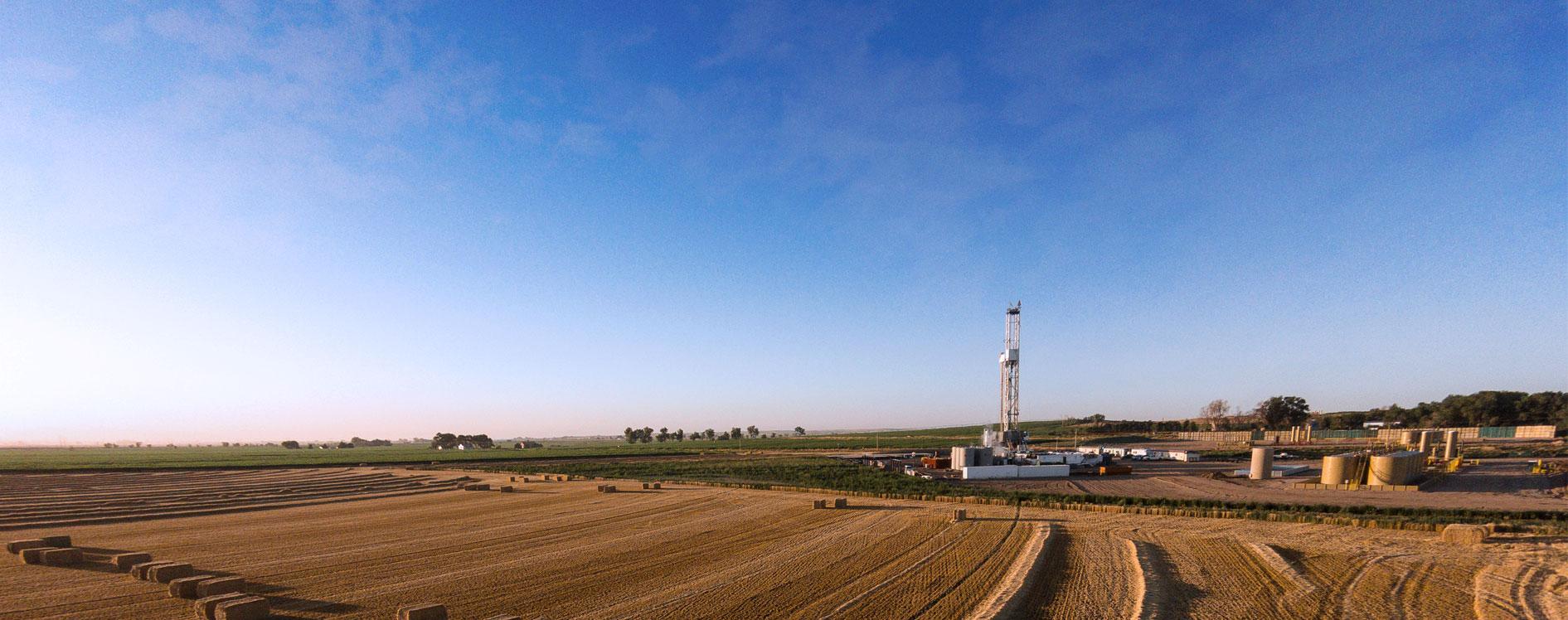 Wattenberg Field